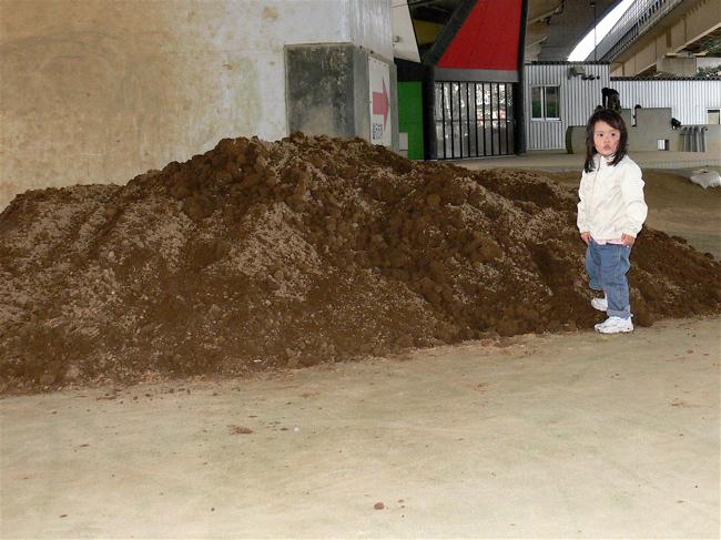 ゴリラ公園に土が搬入されました!!_b0065730_2191517.jpg