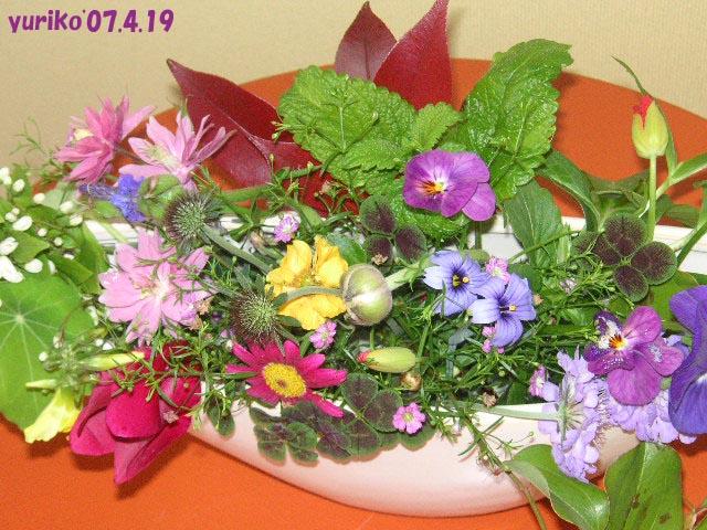 b0051666_3424218.jpg