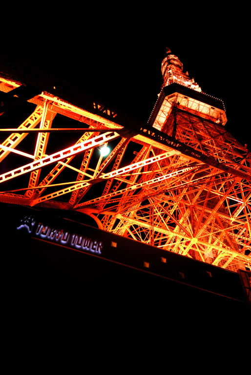 東京タワー_d0119505_1232068.jpg