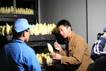 ちこり村が中京テレビ「NEWSリアルタイム」に登場_d0063218_2214230.jpg