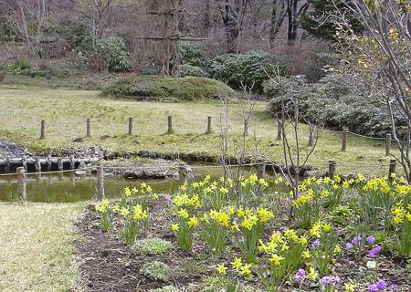 4月22日 春の赤城自然園 セゾンガーデン_a0001354_1949630.jpg