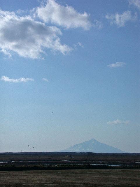早春の北海道半周紀その2:サロベツ原野と利尻と風車_e0100772_23193899.jpg