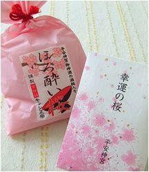 桜の塩漬けを仕入れる_b0067302_23291458.jpg