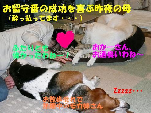 f0121712_1145773.jpg