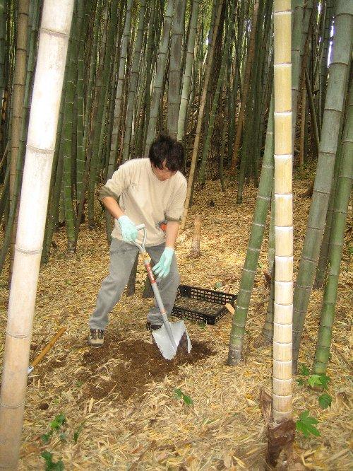 2007 Log Jizo Festival【春】2 家族っていいね_c0038619_23231254.jpg