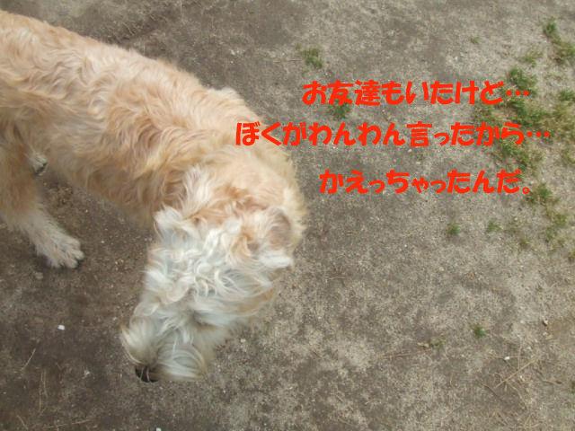 f0059334_1035188.jpg