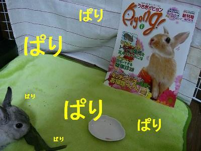 f0104057_20103865.jpg