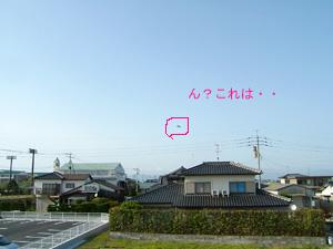 b0030191_2323276.jpg