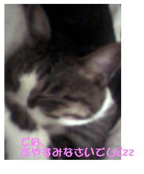 b0022595_15503287.jpg