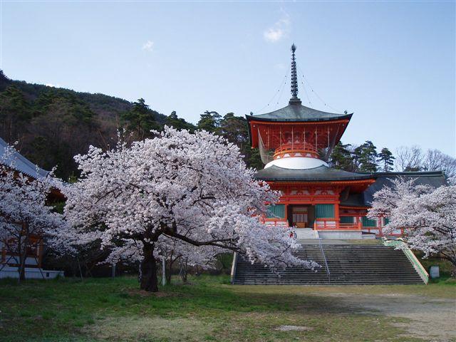 2007年:長野、松本、上諏訪_d0077719_841594.jpg