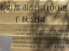 秋田の春~_c0079828_17151066.jpg