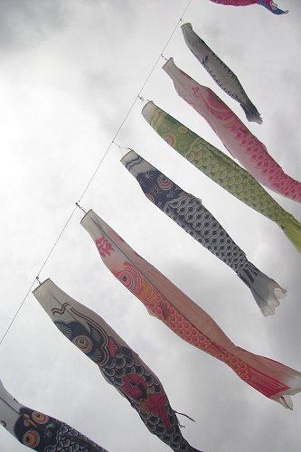 昭和の森おさんぽ_e0000951_0172945.jpg
