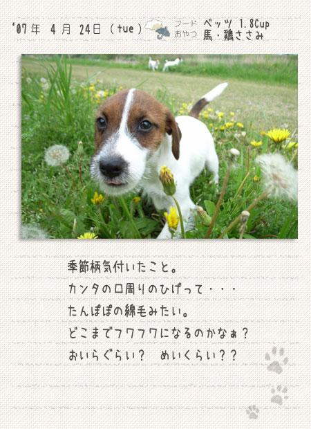 b0040323_0225276.jpg
