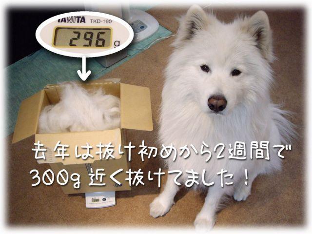 ♪『ヌケヌケ時代』_c0062832_16461335.jpg
