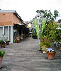 サザンモール休館の二階部分、板張りの通路の部分に、植木や花が綺麗に並べられて、癒しの空間を演出しています。