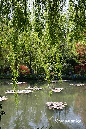 モネの愛した風景、ジヴェルニー_c0024345_6334824.jpg