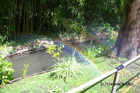 モネの愛した風景、ジヴェルニー_c0024345_6342195.jpg