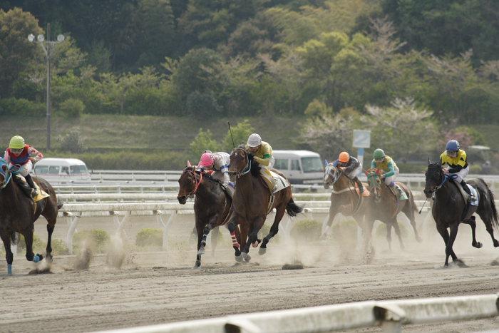 2007年4月15日(日) 高知競馬 7R_a0077663_17591093.jpg