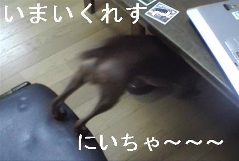 f0123589_12581265.jpg