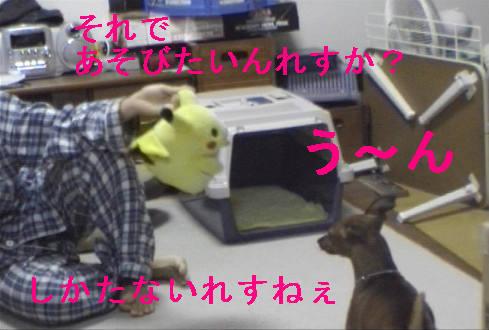 f0123589_132715.jpg