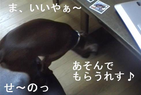 f0123589_138712.jpg