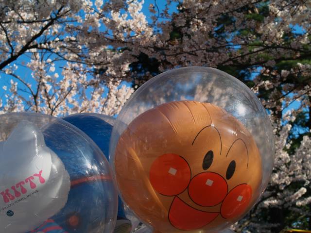 故郷の風景 高田公園の桜2_f0024992_9335978.jpg