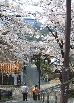 駅から門前町すぃーつ_b0067302_22274481.jpg