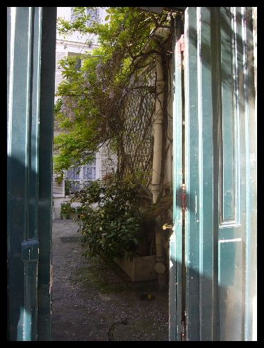 ■街角の花(パリ)_a0008105_6175363.jpg