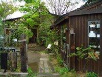 くるみの木、秋篠の森_d0087761_201226.jpg