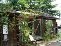 くるみの木、秋篠の森_d0087761_20866.jpg