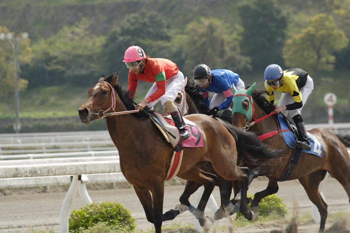 2007年4月15日(日) 高知競馬 6R_a0077663_18421613.jpg