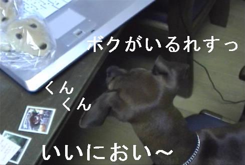 f0123589_1422017.jpg