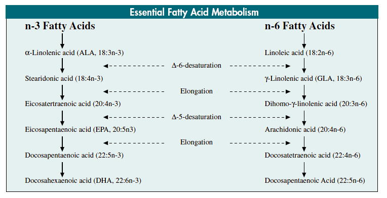 n-6:n-3PUFA比食はうつと炎症性プロセスを促進する_a0007242_14402284.jpg