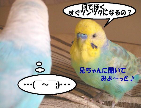 f0132055_12444116.jpg
