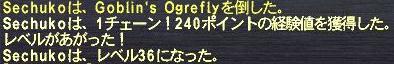 f0105408_10185969.jpg