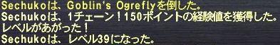 f0105408_10192214.jpg