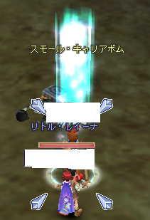 f0122543_1172012.jpg