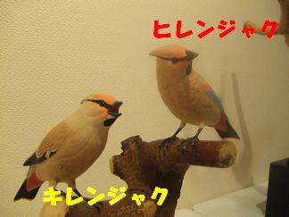 b0082757_18111061.jpg