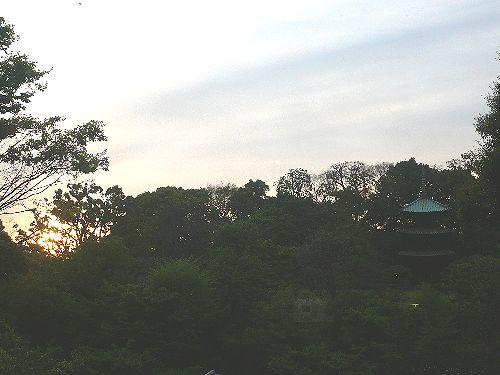 椿山荘 camellia でハープの調べ♬..。.゚。*・。♡_a0053662_174111100.jpg