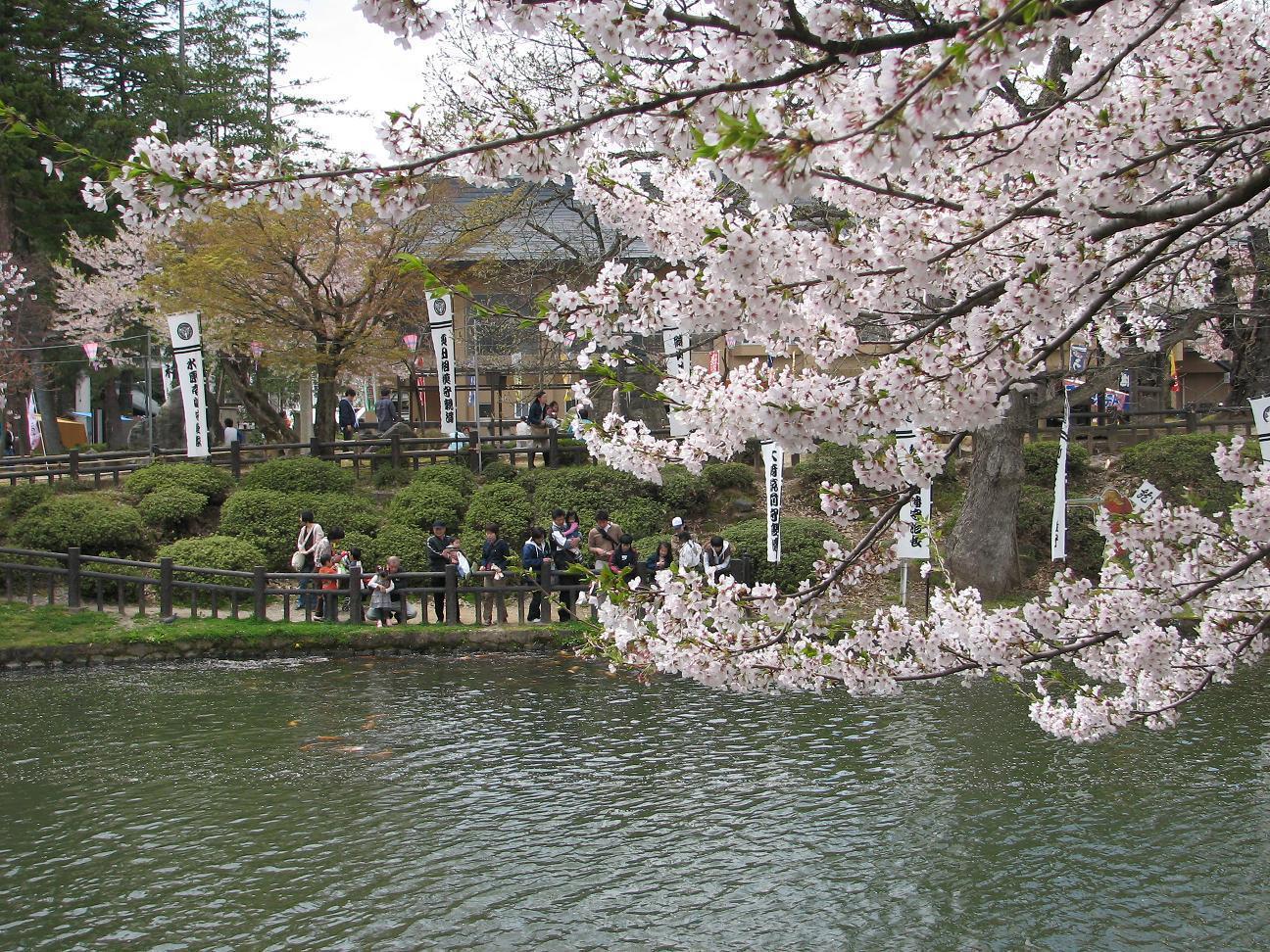 散る桜、残る桜も、散る桜_c0075701_18172430.jpg