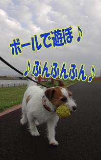 f0035044_15593887.jpg