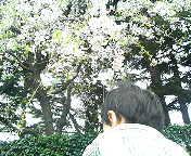 b0032546_10561972.jpg