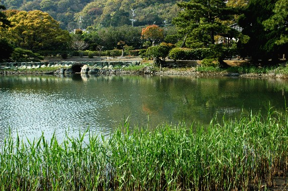 温山荘園_b0093754_032471.jpg