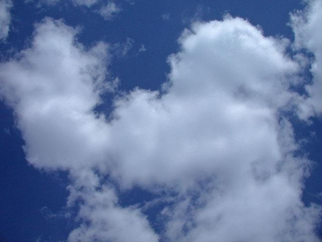 滝川で見た青い空と白い雲_e0100772_22345536.jpg