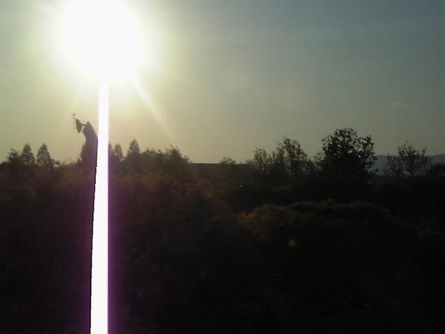 太陽の塔 _b0060102_244483.jpg