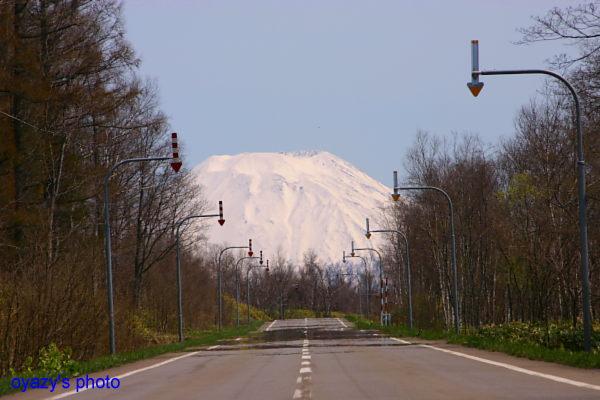 北の春_a0071514_20593237.jpg