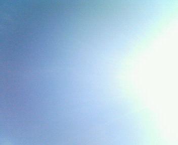 暑いね_e0114246_1523961.jpg