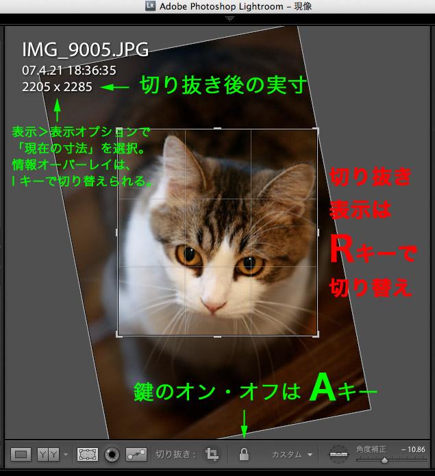 f0075955_9131813.jpg