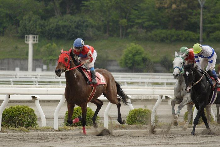 2007年4月30日(月) 高知競馬 10R 忘れな草特別_a0077663_17525235.jpg