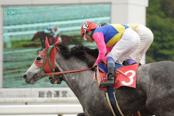2007年4月30日(月) 高知競馬 10R 忘れな草特別_a0077663_1753152.jpg